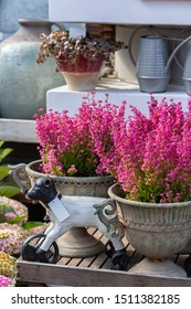 Garden decor Erica elegant blooming pink flowers with an old vase and a toy lamb, floral vertical background. Fresh natural heather flower retro style autumn decoration