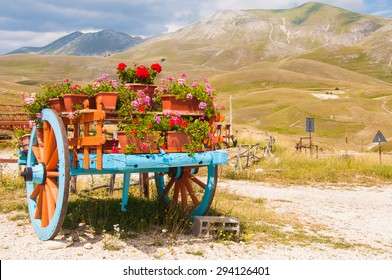 A garden decorated with an old wagon with flowers.