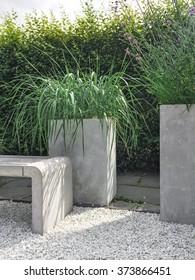Garden with decorative grass, concrete and stone details. Contemporary design.