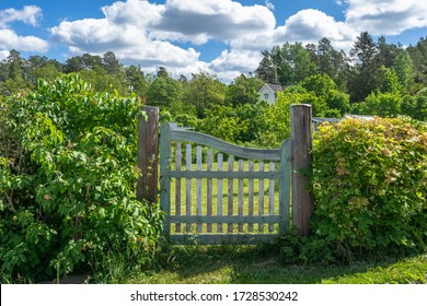 Garden design. Authentic old wooden gate entrance to the garden shabby aged with peeling paint. Countryside authentic cozy little house in a rural area. Garden design with a green bush fence hedge.
