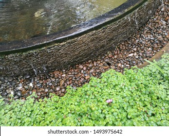 Garden design for relaxing can use water features decorative combined with plant and pebble make it more beautiful