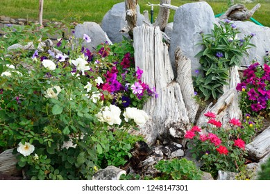 Garden Display with stump as background