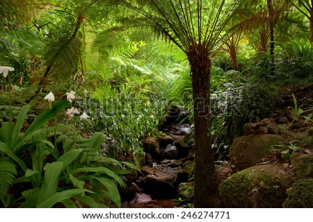 Garden Eden Garden Located Sintra Portugal Stock Photo (Edit Now ...