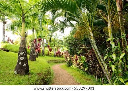 Garden Eden Maui Hawaii Stock Photo (Edit Now) 558297001 - Shutterstock