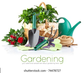 garden equipment with green plant and flower isolated on white background