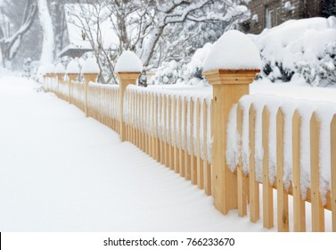 Garden fence, sidewalk and plants covered in snow during a winter storm