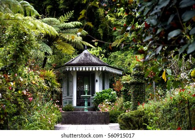 Garden and flowers in la Maison Folio, Hell-Bourg, La Reunion island, French oversea department, France (Indian Ocean)