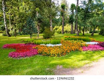 Garden flowers landscape. Beautiful garden flowers park view. Garden flowers park scene. Garden flowers park panorama