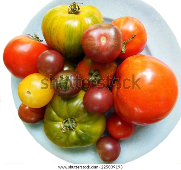 Garden fresh collection of heirloom tomatoes of different sizes on blue plate and white background