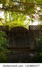 A garden gate is situated among plants and greenery.