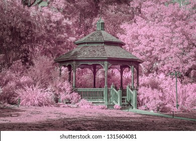 Garden gazebo surrounded by lush foliage in infrared color.