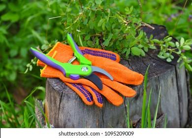 Garden gloves with a pruner for working in the garden
