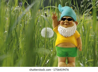 Garden gnome with sunglasses stands in front of a flower meadow.