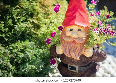 Garden gnome surrounded by beautiful flowers in the garden
