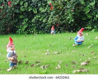 Garden gnomes in an autumn garden in the grass