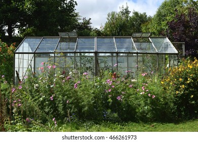 Garden greenhouse with flowers