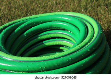 Garden hose bundle on the mown lawn in the summer garden