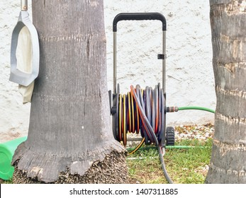 a garden hose wound up on a device to drive stands between two trees, the hose is red and yellow in the colors. On the outside of the left tree trunk hangs a charcoal.