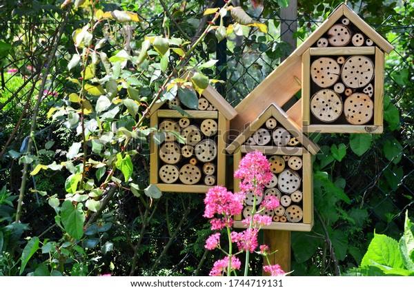 garden-insect-hotel-600w-1744719131.jpg