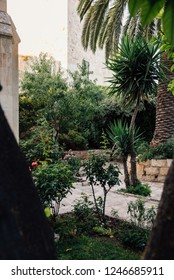 Garden in Jerusalem, Israel