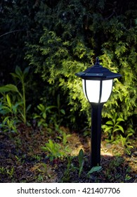 Garden Lamp Shines Beautifully At Night