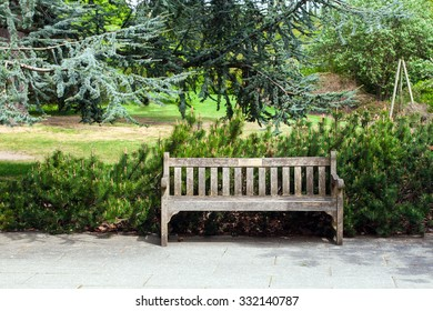Garden landscape with a bench