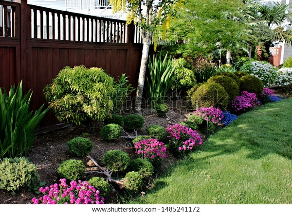 Garden Landscape Design Border Plants Shrubs Stock Photo Edit Now