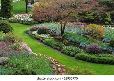 Garden landscaping in spring, victoria, british columbia, canada