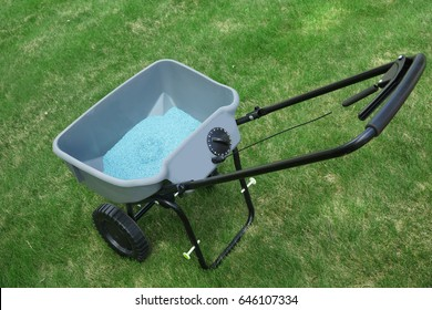 garden lawn seed in spreader on the lawn