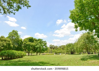 Garden lawn with sky