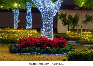 garden lighting decorate on tree