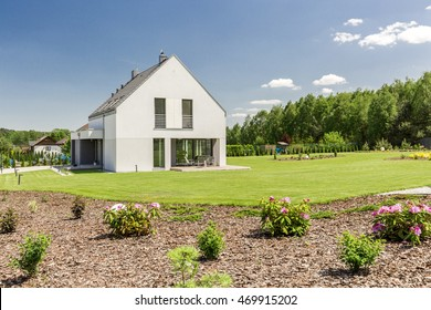 Garden with little shrubs surrounding modern house