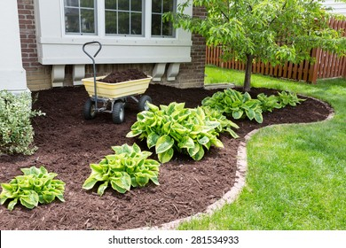 Image result for MULCHING IMAGES