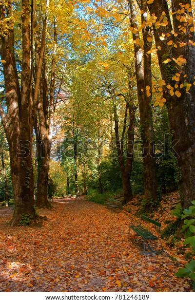 Garden in National Park of Peneda Geres, Portugal