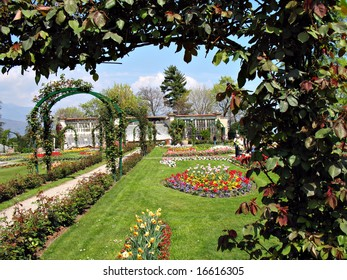 garden near the lake