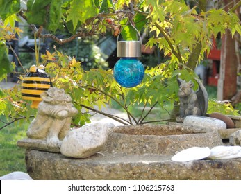 Garden Ornaments and Japanese Maple Tree
