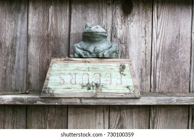 "Garden ornaments on a wooden background, frog and upside down planter. ""Fluers"" is ""Flowers"" in French."