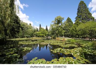 Garden Park in New Zealand