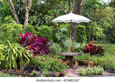 Garden in The Park with wooden stool and umbella
