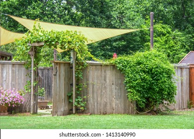 Garden or party area shaded by sails and an umbrella behind privacy fence with open gate  with vines growing on a trellis and on rustic fence and flowers outside - summer trees in background -Go Away