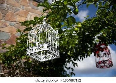 Garden party decor hanging birdcages