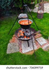 Garden party. Kettle with goulash on tripod over fireplace.