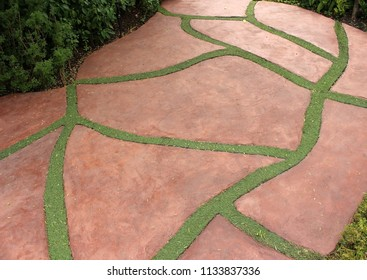 Garden path with the gaps between the slabs filled with grass forming a random pattern.