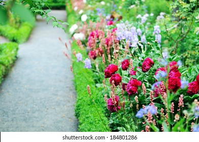 Garden Path with Peonies