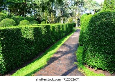 Garden path. Thailand.
