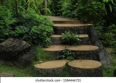 Garden pathway background (close up)