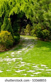 Garden with paved path and luxuriant vegetation