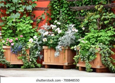 garden planter box. Garden In Planter Boxes Box T