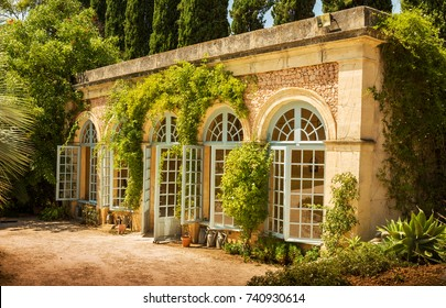 Garden plants conservatory (orangery) building - architecture. Stone elevation with blue windows and climbing plants.