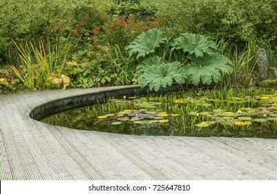Garden pond with decking in September
